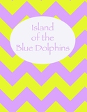 Island of the Blue Dolphins Chevron Binder Cover
