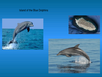 Island of the Blue Dolphins Flora and Fauna