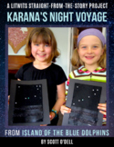 Island of the Blue Dolphins: Karana's Night Voyage project