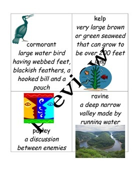 Island of the Blue Dolphins Novel Study Depth and Complexity with google doc!