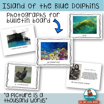 Island of the Blue Dolphins - Literature Study Pack