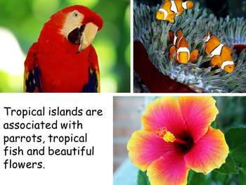 "Islands Nonfiction PowerPoint ""Book"" for First or Second Grade"