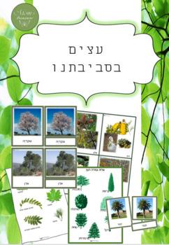 Israel trees
