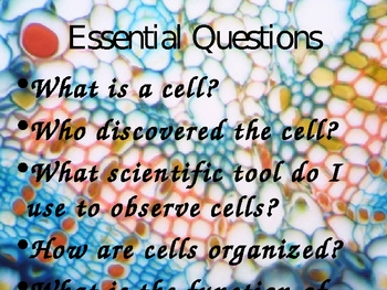 It All Starts with a Cell: Cells, Organs, and Organ Systems