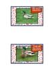 It's A Wildlife! Photographic Animal Flashcards