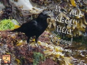 It's All About That Crow...Crow Facts and Crafty