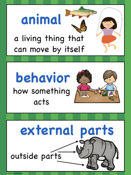 First Grade NGSS Vocabulary for Your Word Wall