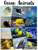 It's Just WRITE {Ocean Animals Edition}