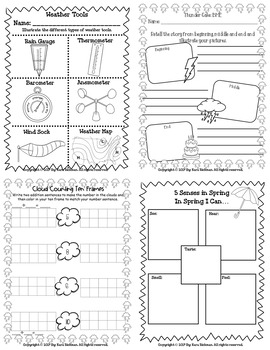 It's Raining Cats and Dogs! A Weather Thematic Unit Grades 1-3