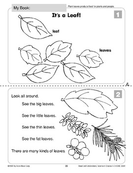 It's a Leaf (Life Science/Plants)