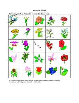 Italian Flower Picture Bingo and Hidden Words Game