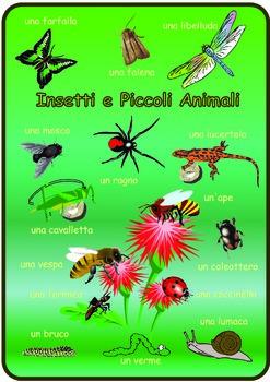 Italian  Minibeasts  Poster . A3