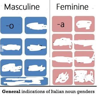 Italian Noun Gender Endings