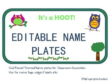 It's A Hoot Name Plate Owl/Woodland Themed Classroom Decoration