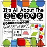 Kindergarten 2D and 3D Shapes