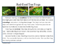 It's All In The Details!  Red-Eyed Tree Frog Close Reading