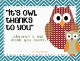 Thank You Cards - Owl and Chevron
