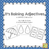 Spring Grammar Activity - Nouns and Adjectives