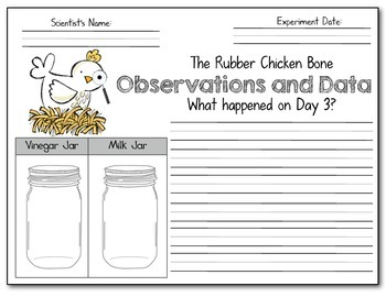 It's Science Time! The Rubber Chicken Bone Experiment