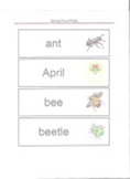 """""""It's Spring"""" Word Walls"""