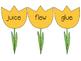 It's spring! Read the Room...Irregular vowel patterns ew, ui, ue