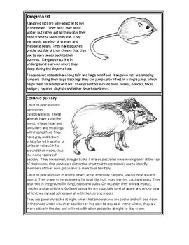 J. Craighead George Novel Study, Ecology & Food Webs - The Desert