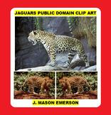JAGUARS PUBLIC DOMAIN CLIP ART