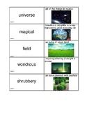 JOURNEYS unit 6 bundle oral vocabulary word cards