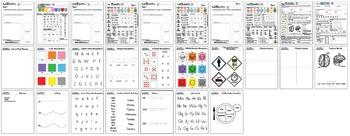 JOYrific Preschool Assessment (Full Package)