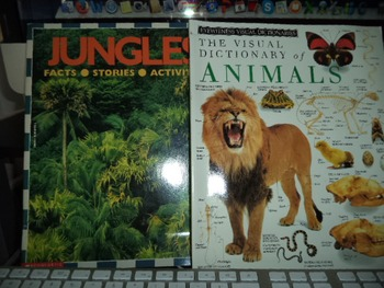 JUNGLES  ANIMALS              (SET OF 2)