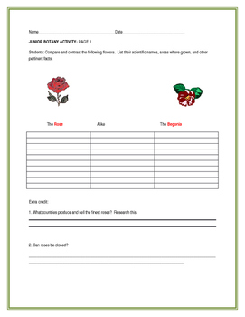 JUNIOR BOTANY ACTIVITY: THREE PAGE BUNDLE ON FLOWERS