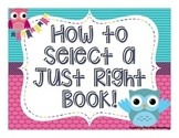 JUST RIGHT BOOK  -- How to select a Just Right Book - OWL THEME- Posters