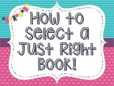 JUST RIGHT BOOK  -- How to select a Just Right Book -- Posters
