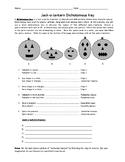 Jack-O-Lantern Dichotomous Key