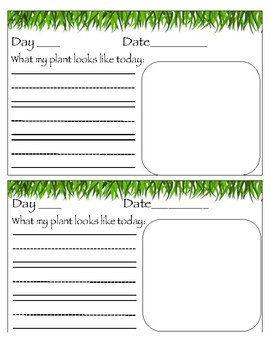 Jack and the Beanstalk Journaling Project