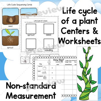 Plants Jack and the Beanstalk Activities- Math  Science  ELA PK and K