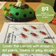Jack's Garden of Carrots for Speech and Language