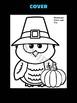 Jackie's Crafts -  Pilgrim Owl Craftivity - Thanksgiving Activity