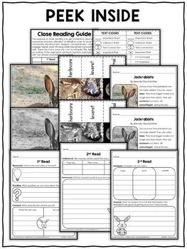 Close Reading Passage - Jackrabbit Activities