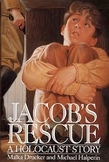 Jacob's Rescue  - Chapter Vocabulary and Comprehension Que