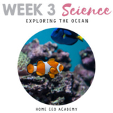 Ocean Science Unit for Kindergarten
