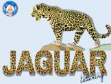Jaguar Animal Print Letters and Numbers Font Clip Art