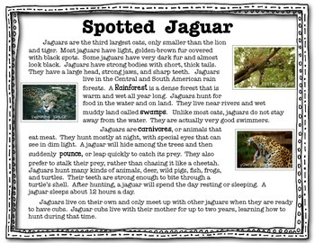 Jaguar Close Read
