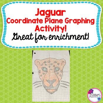 Jaguar Coordinate Graphing Picture
