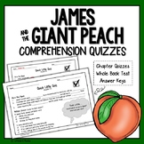 James and the Giant Peach Quiz (James and the Giant Peach Chapter Questions)