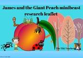 James and the Giant Peach Mini-beast leaflet