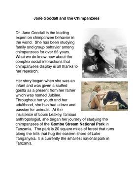 Jane Goodall and the Chimpanzees