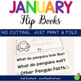 January Flip Books
