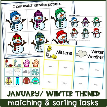 January Matching & Sorting Activities