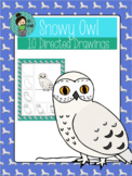 January New Year Snowy Owl Directed Drawing